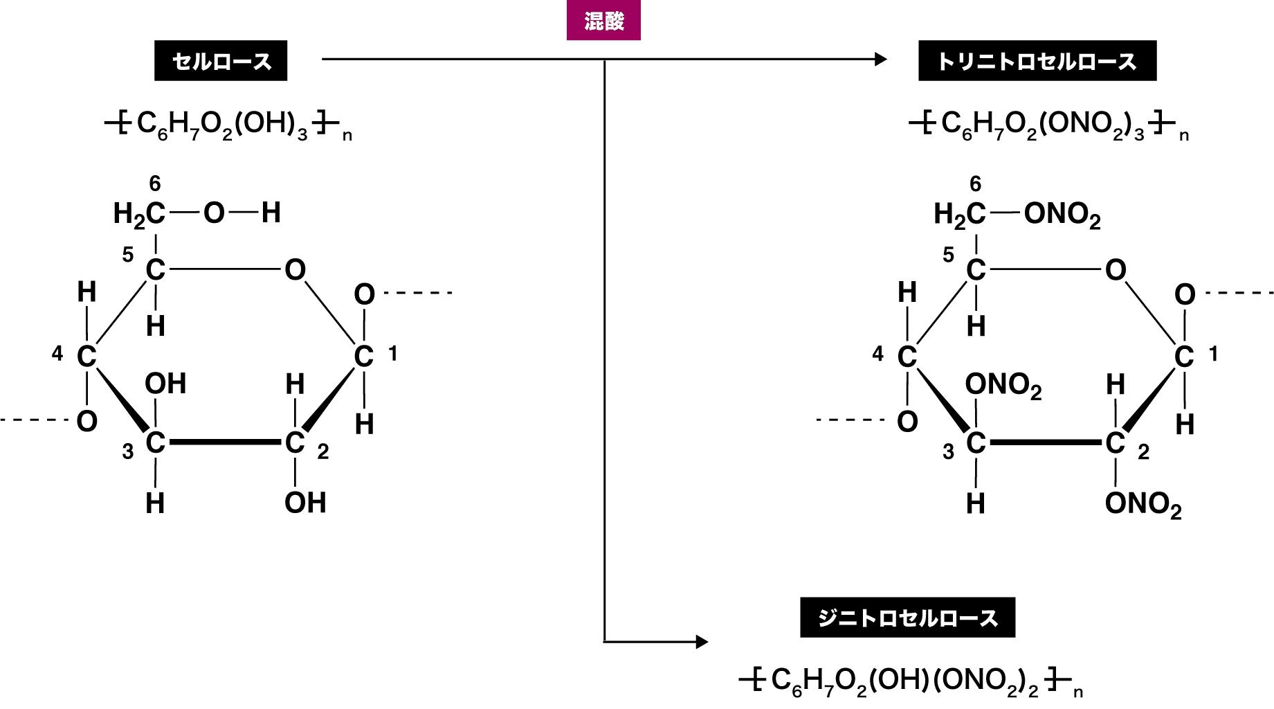 酢酸 セルロース