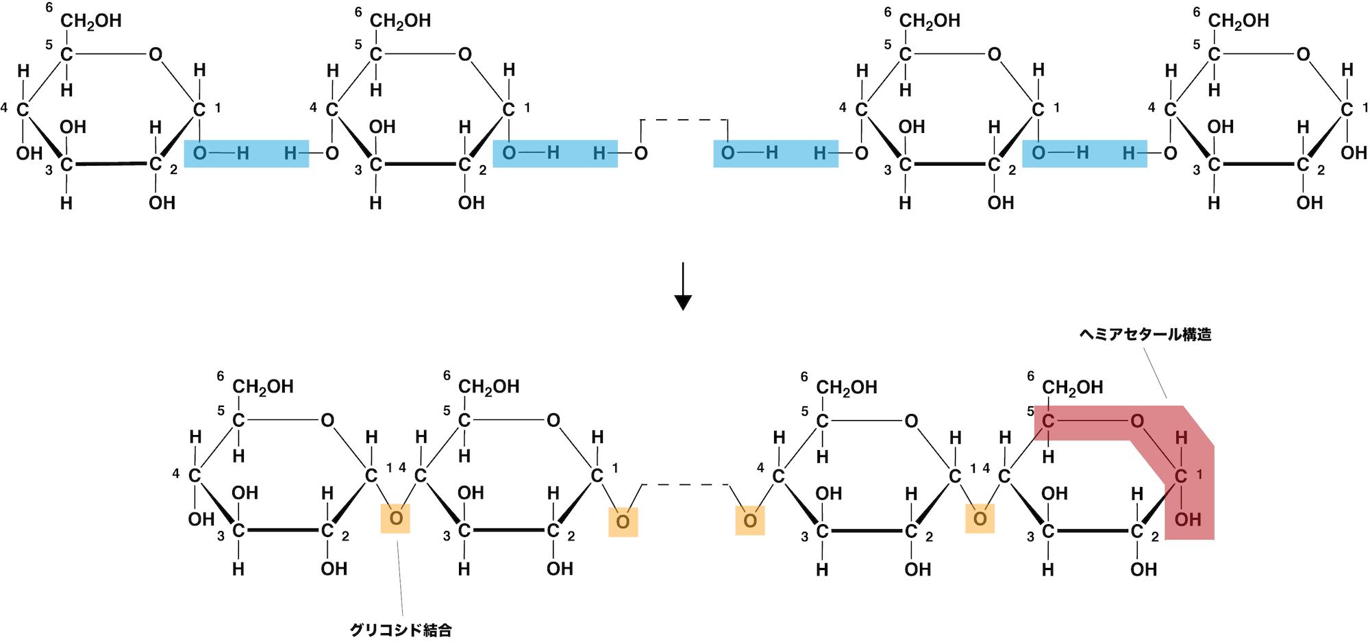 デンプン 化学式