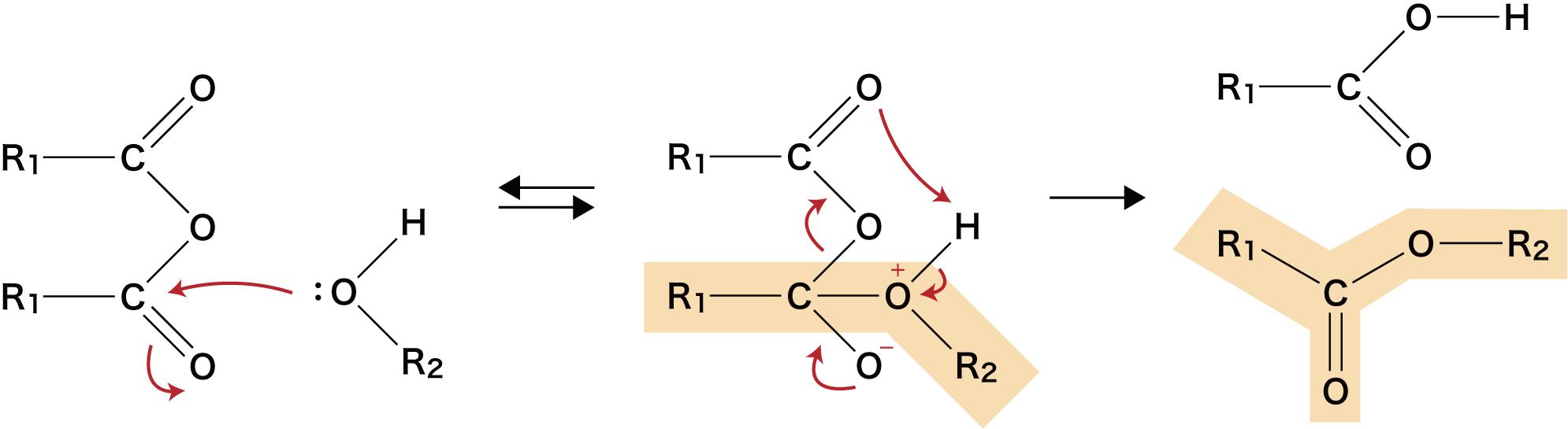 沸点 酢酸 エチル